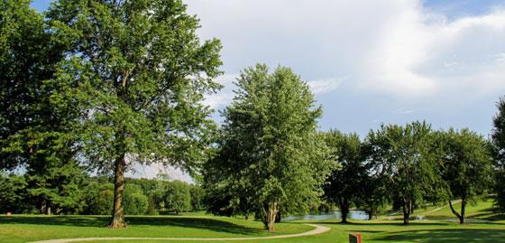 Photo Golf Course Skyline