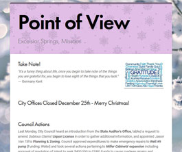 Point of View Newsletter v1 issue 6