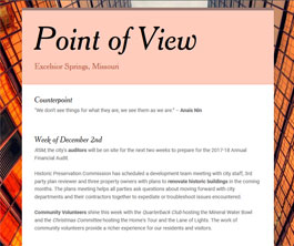 Point of View Newsletter v1 issue 3