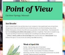 Point of View Newsletter v2 issue 14