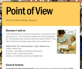 Point of View Newsletter v2 issue 19
