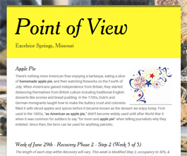 Point of View Newsletter v2 issue 26