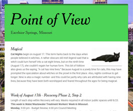 Point of View Newsletter v2 issue 33