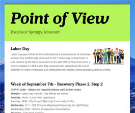 Point of View Newsletter v2 issue 36