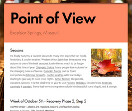 Point of View Newsletter v2 issue 40