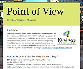 Point of View Newsletter v2 issue 41