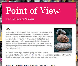 Point of View Newsletter v2 issue 42
