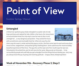 Point of View Newsletter v2 issue 45