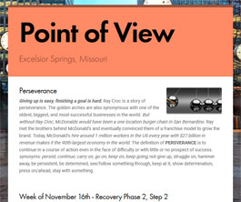 Point of View Newsletter v2 issue 46