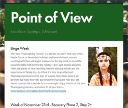 Point of View Newsletter v2 issue 47