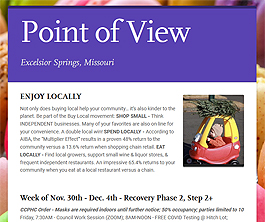 Point of View Newsletter v2 issue 48