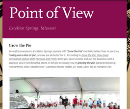 Point of View Newsletter v2 issue 43