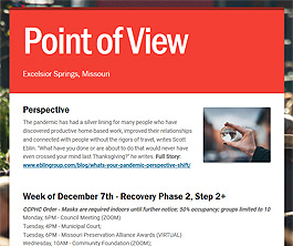 Point of View Newsletter v2 issue 49