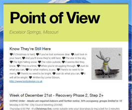 Point of View Newsletter v2 issue 51
