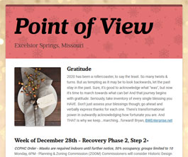 Point of View Newsletter v2 issue 52