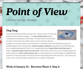 Point of View Newsletter v3 issue 4