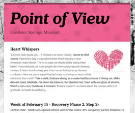 Point of View Newsletter v3 issue 7