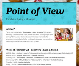 Point of View Newsletter v3 issue 8