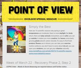 Point of View Newsletter v3 issue 12